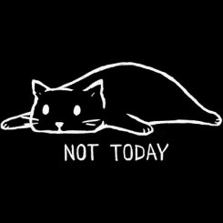 تیشرت Not Today2