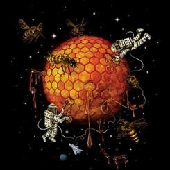 تیشرت Honey Moon