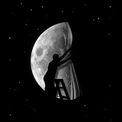 تیشرت Half moon